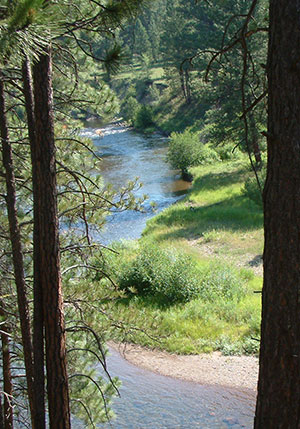 A view of the Clearwater River in Montana