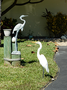 Heron with statue