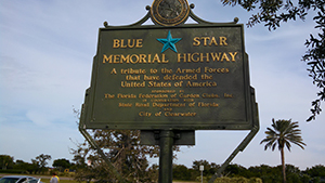 Blue Star Sign